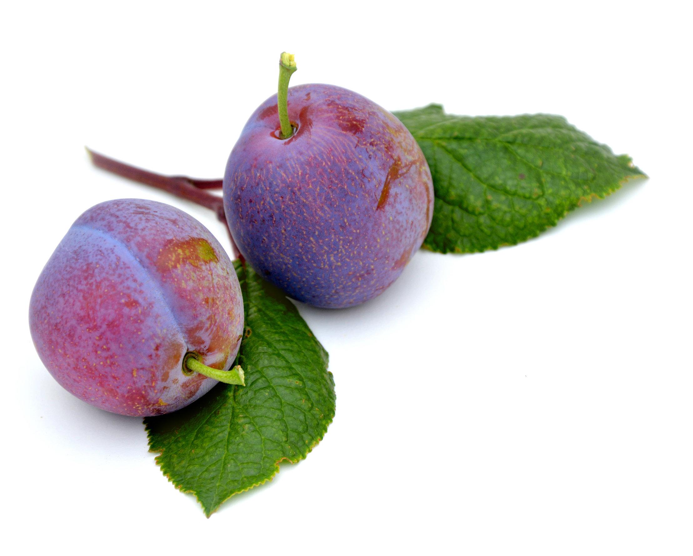 Easy plum freezer jam