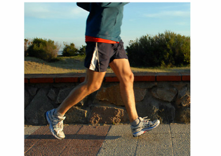 Exercise improves diversity of healthy intestinal bacteria